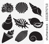 vector sea shells black... | Shutterstock .eps vector #1022870713