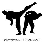 fight between two taekwondo... | Shutterstock .eps vector #1022883223