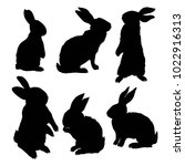 silhouette rabbit   illustration | Shutterstock . vector #1022916313