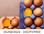 horizontal closeup shot with... | Shutterstock . vector #1022919403