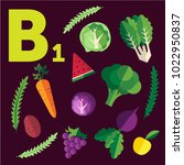 vitamin b1 with set of useful... | Shutterstock .eps vector #1022950837