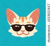 cat emotional head. vector... | Shutterstock .eps vector #1023021817