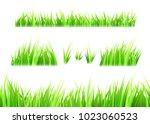 grass vector isolated on white... | Shutterstock .eps vector #1023060523