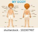 illustration poster of the... | Shutterstock .eps vector #102307987
