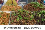 deep fried bugs for sale at a... | Shutterstock . vector #1023109993