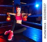 full body portrait of boxer... | Shutterstock . vector #1023200227