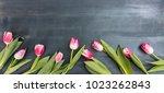 womens day. pink tulips border... | Shutterstock . vector #1023262843