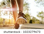 sports woman legs in running... | Shutterstock . vector #1023279673
