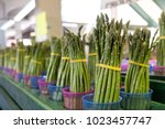 bunches of asparagus at a local ... | Shutterstock . vector #1023457747