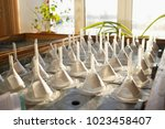 germination table system with...   Shutterstock . vector #1023458407