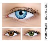 realistic vector set of human... | Shutterstock .eps vector #1023462433