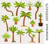 palma vector palmaceous...   Shutterstock .eps vector #1023512173