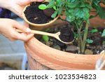 coffee ground  coffee residue... | Shutterstock . vector #1023534823