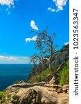 beautiful summer sea landscape...   Shutterstock . vector #1023563347