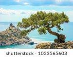 beautiful summer sea landscape...   Shutterstock . vector #1023565603