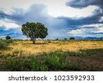 a solitary lone tree standing... | Shutterstock . vector #1023592933