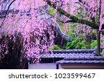 kyoto  japan   07 april 2017 ... | Shutterstock . vector #1023599467