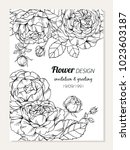roses flower frame drawing ... | Shutterstock .eps vector #1023603187