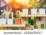 home decoration with cactus... | Shutterstock . vector #1023624517