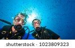 Couple Of Scuba Divers ...