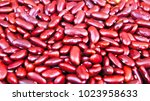 a lot of red beans | Shutterstock . vector #1023958633