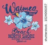 north shore waimea bay surfing... | Shutterstock .eps vector #1024000357