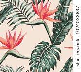 tropical beach flowers bird of... | Shutterstock .eps vector #1024033837