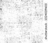 grunge black and white.... | Shutterstock . vector #1024039603
