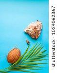 tropical paradise concept  big...   Shutterstock . vector #1024062367