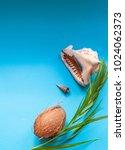 tropical paradise concept  big...   Shutterstock . vector #1024062373