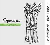 asparagus vector illustration.... | Shutterstock .eps vector #1024110553