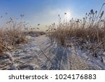 lake in winter. location ... | Shutterstock . vector #1024176883