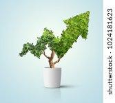 tree grows up in arrow shape... | Shutterstock . vector #1024181623