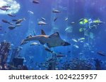 dubai  uae   september 7  2015  ... | Shutterstock . vector #1024225957