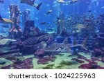 dubai  uae   september 7  2015  ... | Shutterstock . vector #1024225963