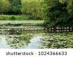 Leicester Abbey Park  England...