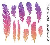 colorful birds feathers of set... | Shutterstock .eps vector #1024405483