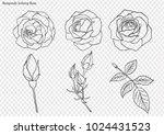 rose vector set by hand drawing.... | Shutterstock .eps vector #1024431523