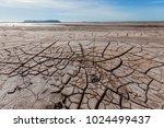 dry land as in the desert | Shutterstock . vector #1024499437