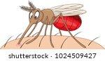 cartoon mosquito sucking blood   Shutterstock .eps vector #1024509427