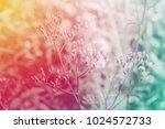 grass flower spring fresh...   Shutterstock . vector #1024572733
