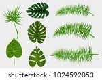 set collection isolated.... | Shutterstock .eps vector #1024592053