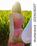follow me to green field. | Shutterstock . vector #1024618207