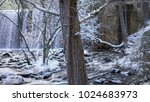 mountain  snowy landscape with...   Shutterstock . vector #1024683973