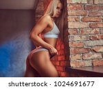 a sexy seductive blonde dressed ... | Shutterstock . vector #1024691677