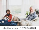 senior couple relaxing at home. | Shutterstock . vector #1024749073
