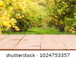 wood table top with blur of... | Shutterstock . vector #1024753357