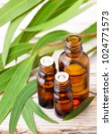 eucalyptus essential oil in the ... | Shutterstock . vector #1024771573
