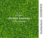 Green Leaves Texture. Vector...