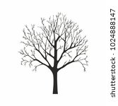 tree silhouette on white... | Shutterstock .eps vector #1024888147